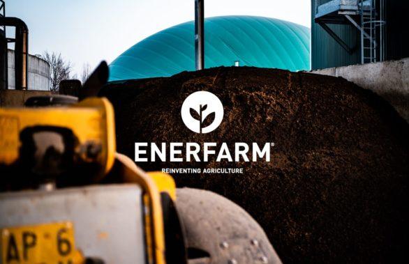 Enerfarm - Consulenza strategica e posizionamento
